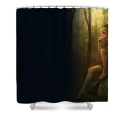 The Legend Of Zelda Shower Curtain