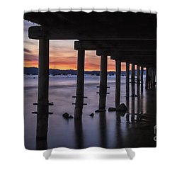Timber Cove Shower Curtain by Mitch Shindelbower