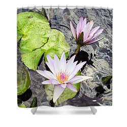 Tranquility  Shower Curtain by Don Wright