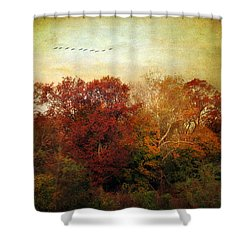 Treetops Shower Curtain by Jessica Jenney