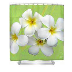 Tropical Frangrapani Shower Curtain