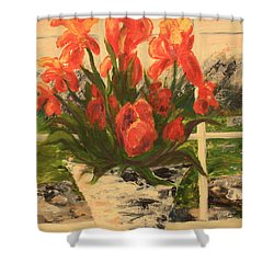 Tulips Shower Curtain by Nancy Czejkowski