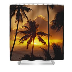 View Of Tahiti Shower Curtain by Joe Carini - Printscapes