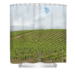 Vineyard In Sardinia Shower Curtain