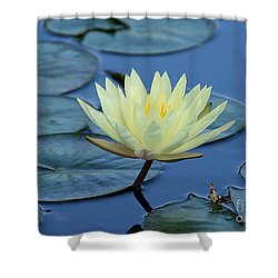 Shower Curtain featuring the photograph Water Lily by Lisa L Silva
