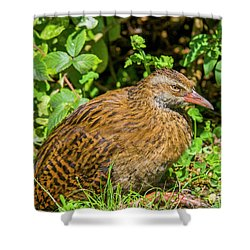 Weka Shower Curtain