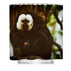 Shower Curtain featuring the photograph White Saki by The 3 Cats
