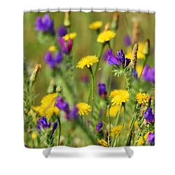 Shower Curtain featuring the photograph wild Flowers by Werner Lehmann