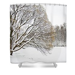 Winter Park Shower Curtain by Irina Afonskaya