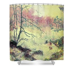 Woods And Wetlands Shower Curtain