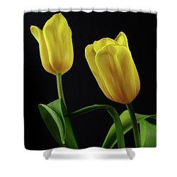 Shower Curtain featuring the photograph Yellow Tulips by Dariusz Gudowicz