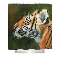 Shower Curtain featuring the painting Young Amur Tiger  by David Stribbling