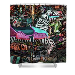 Shower Curtain featuring the photograph Zebra Carousel by Michael Arend