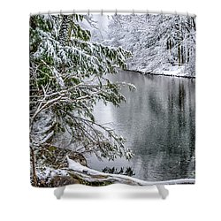 Shower Curtain featuring the photograph Winter Along Cranberry River by Thomas R Fletcher