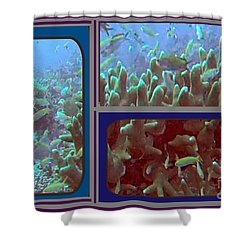2015 Periscope Perspective Gallery Underwater Coral Reef Vegitation Photography In Landscape Format Shower Curtain