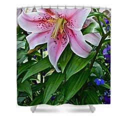 2015 Summer At The Garden Event Garden Lily 3 Shower Curtain
