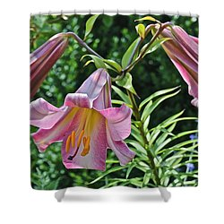 2015 Summer At The Garden Lilies In The Rose Garden 2 Shower Curtain