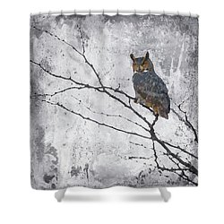 2016 Art Series #25 Shower Curtain