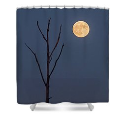 2016 November Supermoon Minimalist Nj Shower Curtain