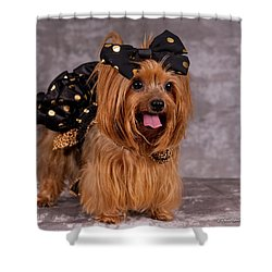 20160805-dsc00531 Shower Curtain