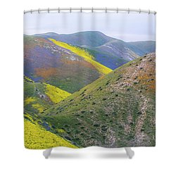 2017 California Super Bloom Shower Curtain by Marc Crumpler