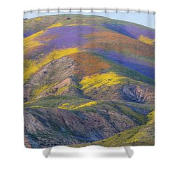 2017 Carrizo Plain Super Bloom Shower Curtain
