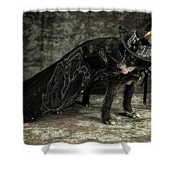 20170804_ceh1124 Shower Curtain