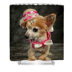 20170804_ceh1142 Shower Curtain