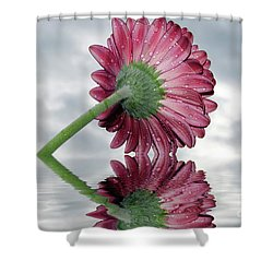 Nice Gerber Shower Curtain by Elvira Ladocki