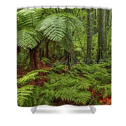 Shower Curtain featuring the photograph Jungle by Les Cunliffe
