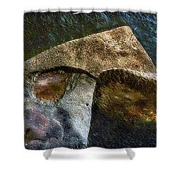 Stone Sharkhead Shower Curtain