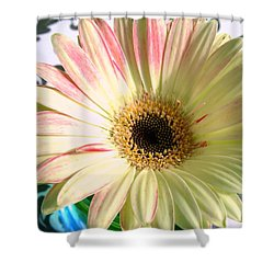 2567c2 Shower Curtain by Kimberlie Gerner