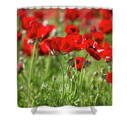 Fine Art  Shower Curtain
