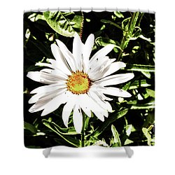 278 - Flower Series 1.4 Hdr Shower Curtain by Chris Berry