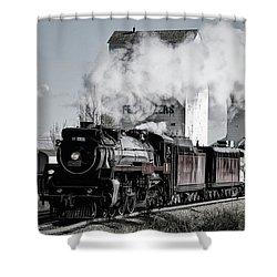 2816 At Dewinton Shower Curtain