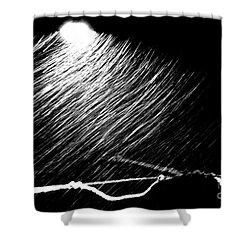 3-21-16 Snow Shower Curtain