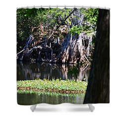 Across The River Shower Curtain by Warren Thompson