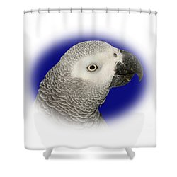 Shower Curtain featuring the photograph African Grey Parrot  by Debbie Stahre