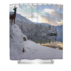 Shower Curtain featuring the photograph Alpine Winter Reflections by Ian Middleton