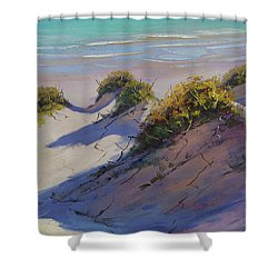 Beach Dunes Shower Curtain