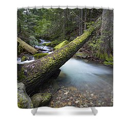 Beauty Creek Shower Curtain