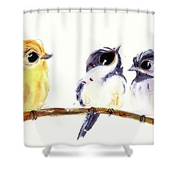 Shower Curtain featuring the painting 3 Birds On A Branch by Dawn Derman