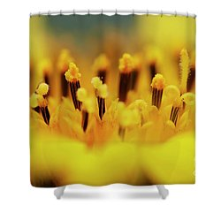 Bloom Shower Curtain by Michal Boubin