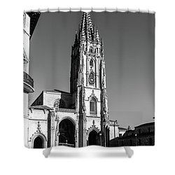 Cathedral Shower Curtain
