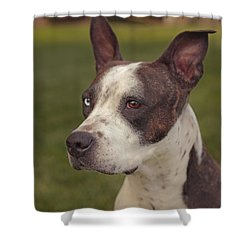 Cleopitra  Shower Curtain