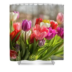 Colorful Tulips Shower Curtain
