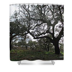 Cork Oaks Shower Curtain