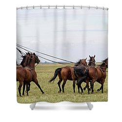 Csiko Rider Shower Curtain