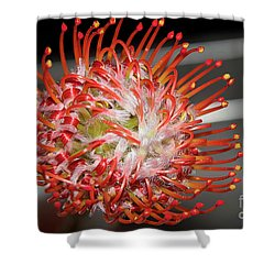 Exotic Flower Shower Curtain by Elvira Ladocki