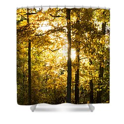 Shower Curtain featuring the photograph Fall Color Virginia West Virginia by Kevin Blackburn